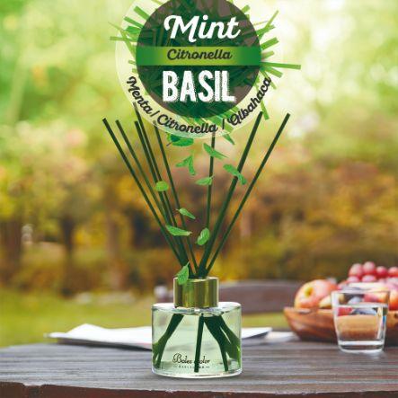 Mint, Citronella & Basil